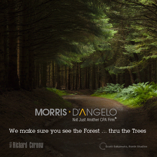 Daniel-Morris_May2016-FacebookSquare_Forest